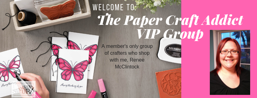 VIP group cover page
